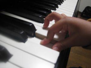 丸い指の形研究2