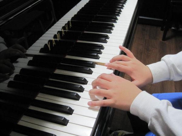 両手のいい形の指 ピアノ